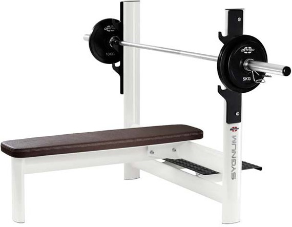 Скамья GYM80 Sygnum Basic Press Bench 4008