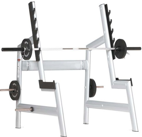 ������� �������� GYM80 Sygnum Basic Squat Rack 4024