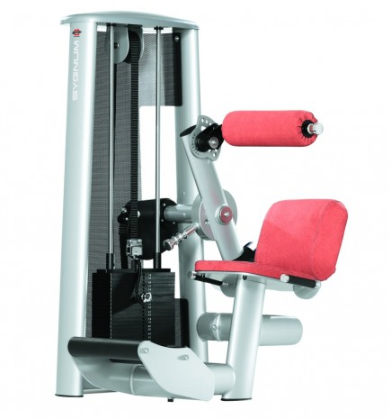 Силовой тренажер GYM80 Sygnum Standards Lower Baсk Machine 3007
