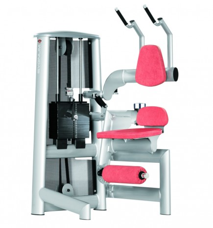 Силовой тренажер GYM80 Sygnum Standards Abdominal Machine 3008