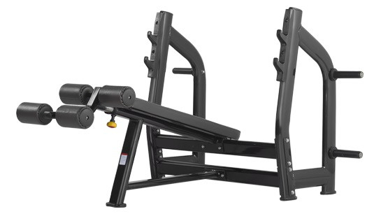 Скамья BRONZE GYM H series H-024