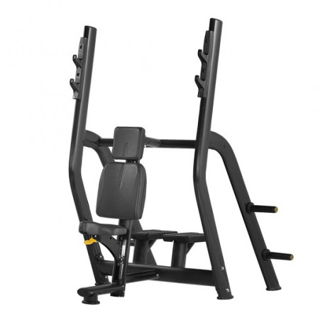 Скамья BRONZE GYM H series H-025B