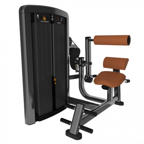 Силовой тренажер LIFE FITNESS Insignia Series Back Extension SS-BE