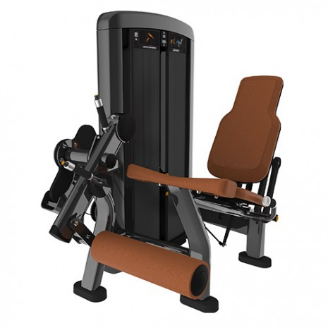 Силовой тренажер LIFE FITNESS Insignia Series Leg Extension SS-LE