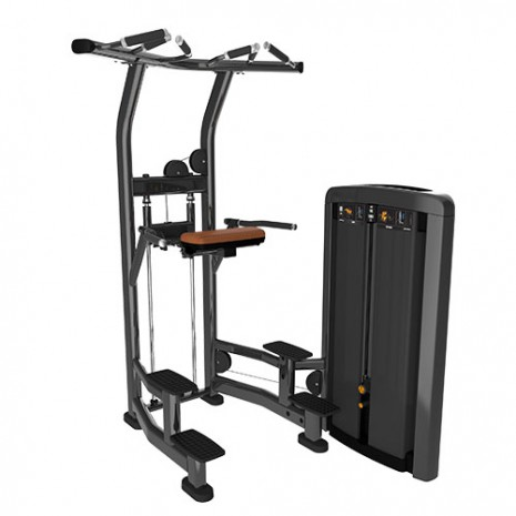 Силовой тренажер LIFE FITNESS Insignia Series Assist Dip Chin SS-ADC