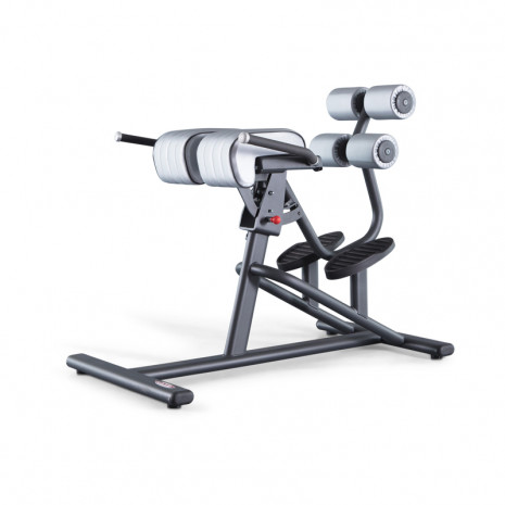 Скамья PANATTA Fit Evo Adjustable back Extension 1FE200